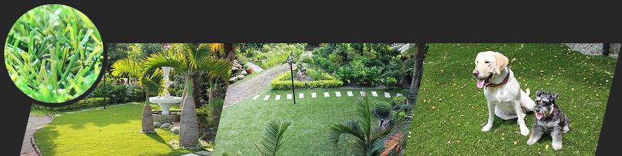 庭院人造草皮应用范围